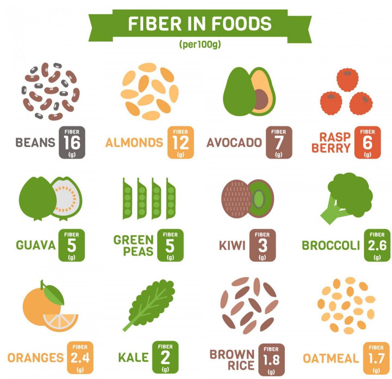 Fibre in food s (2)